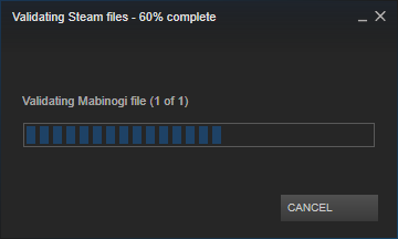 Steam_Verify_EN_3.png